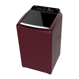 Whirlpool 6.5 kg Top Load Fully Automatic Washing Machine (65 SW DC, Wine)_1