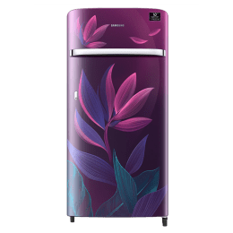 Samsung 198 Litres 4 Star Direct Cool Inverter Single Door Refrigerator (Precise Cooling Plus, RR21T2G2X9R/HL, Paradise Bloom Purple)_1