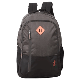 Skybags Solids 30 L Laptop Backpack (PLBPARTHGRY, Grey)_1