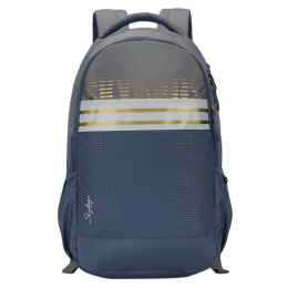 Sky Bags Herios 27 Litres Laptop Backpack (BPHER2GRY, Grey)_1