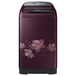 Samsung 7.5 kg Fully Automatic Top Loading Washing Machine (WA75M4020HP/TL, Plum)_1