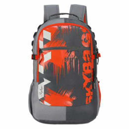 Sky Bags Komet Plus-02 School Backpack (LPBPLAZ3GRY, Grey)_1