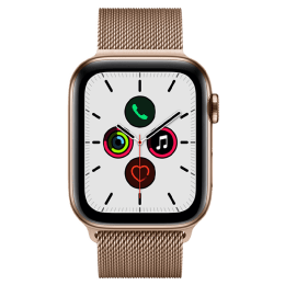Apple Watch Series 5 (GPS + Cellular, 4.4 cm (40 mm), Gold Stainless Steel with Gold Milanese Band, MWWJ2HN/A)_1