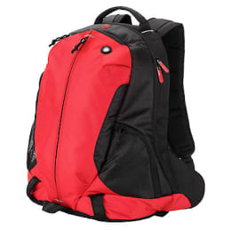HP Select 75 Water Resistant Laptop Backpack (H4X02AA#UUF, Red/Black)_1