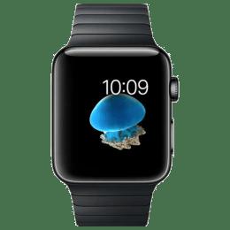 Apple Watch Series 2 Smartwatch (GPS, 42mm) (Ambient Light Sensor, MNQ02HN/A, Space Black, Link Bracelet)_1