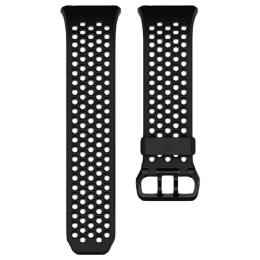 Fitbit Ionic Large Band (FB164SBBKL, Black and Grey)_1