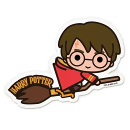 The Souled Store Harry Potter Broom Sticker (Multicolor)_1