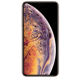Apple iPhone XS Max (Gold, 256 GB, 4 GB RAM)_1