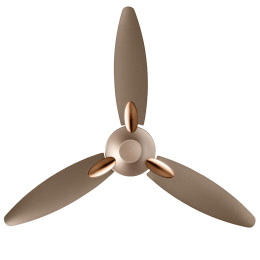 Usha Bloom Daffodil 125cm 3 Blades Ceiling Fan (Golden and Brown)_1