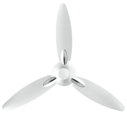 Usha Bloom Daffodil 125cm 3 Blade Ceiling Fan (Sparkal White)_1