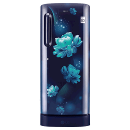 LG 235 Litres 4 Star Direct Cool Inverter Single Door Refrigerator (Smart Connect, GL-D241ABCY.DBCZEB, Blue Charm)_1