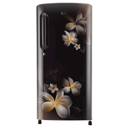 LG 190 Litres 4 Star Direct Cool Inverter Single Door Refrigerator (Smart Connect, GL-B201AHPY.AHPZEB, Hazel Plumeria)_1