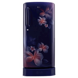 LG 190 Litres 4 Star Direct Cool Inverter Single Door Refrigerator (Smart Connect, GL-D201ABPY.ABPZEB, Blue Plumeria)_1