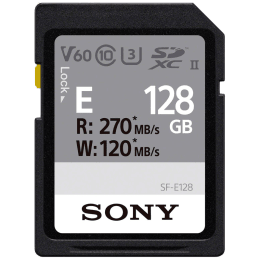 Sony 128 GB Memory Card (SF-E128, Black)_1
