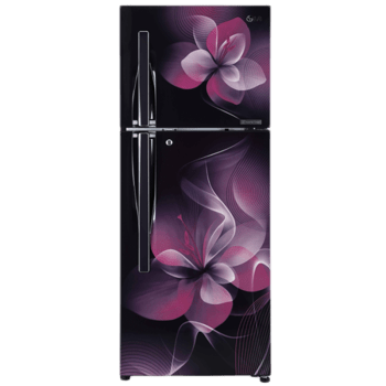 LG 260 L 3 Star Frost Free Double Door Inverter Refrigerator (GL-C292RPDU, Purple Dazzle)_1