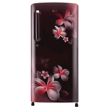 LG 190 L 4 Star Direct Cool Single Door Inverter Refrigerator (GL-B201ASPY.ASPZEB, Scarlet Plumeria)