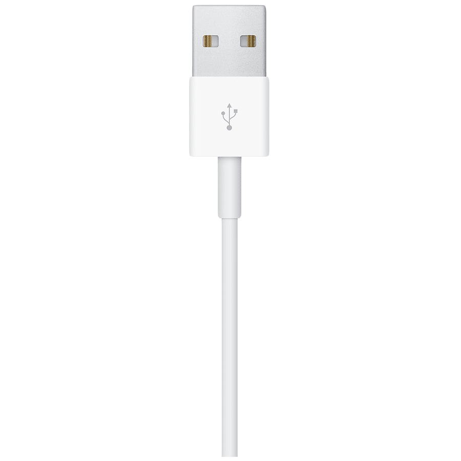 Apple 100 cm USB (Type-A) to Magnetic Charging USB Cable (RWACR004, White)_4