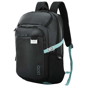 Skybags Intern 2 30 Litres TPE Backpack (LPBPINT2BLK, Black)_4