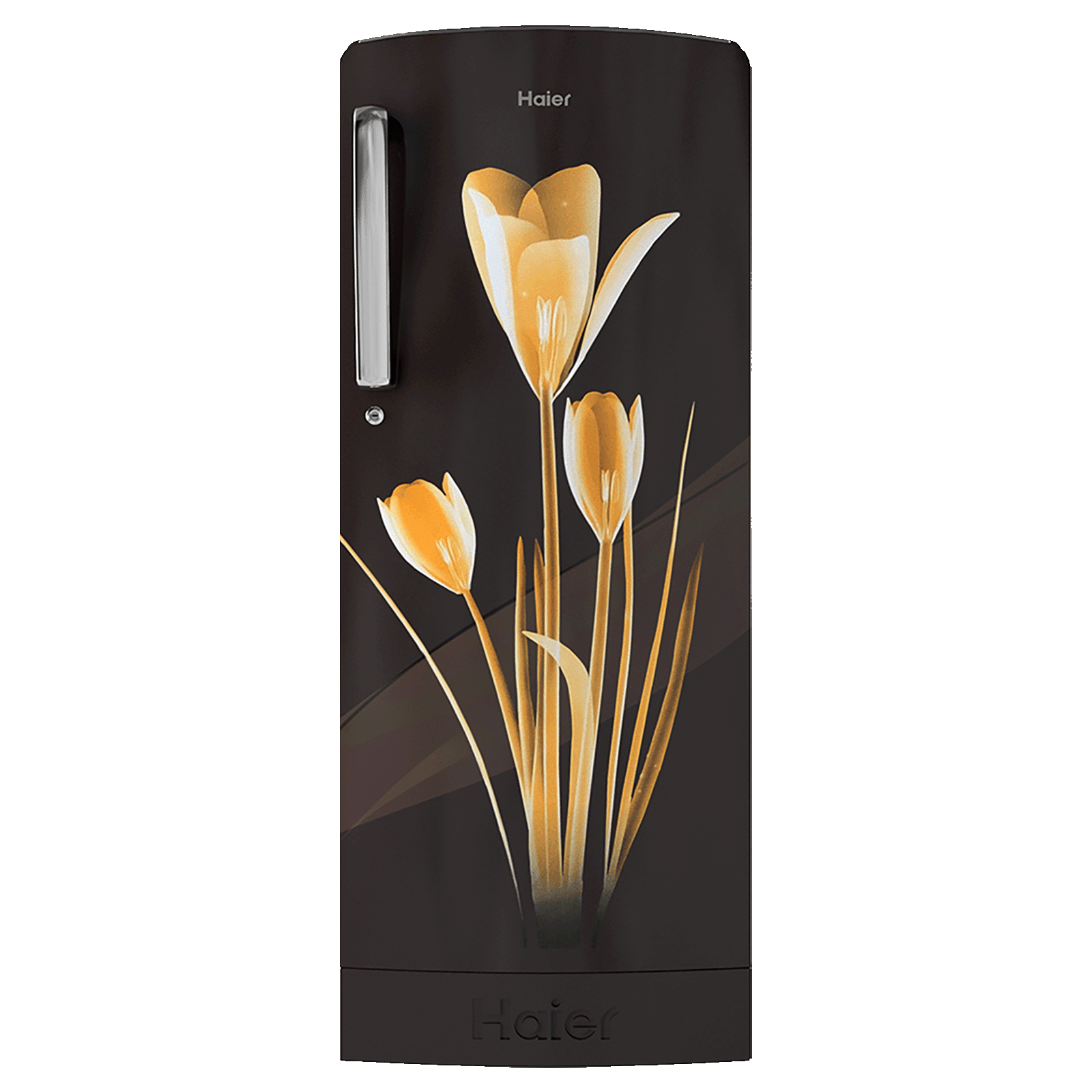 Haier 192 Litres 3 Star Direct Cool Single Door Refrigerator (With Base Drawer, HRD- 1923PKL-E, Black Lily)