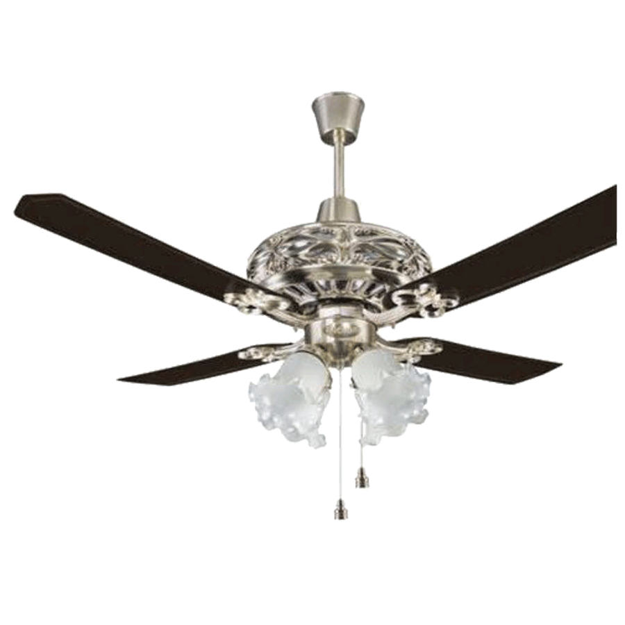 Anchor Dezire 120cm Sweep 3 Blade Ceiling Fan (Speed 360 RPM, 14027BS, Brush Steel)_1