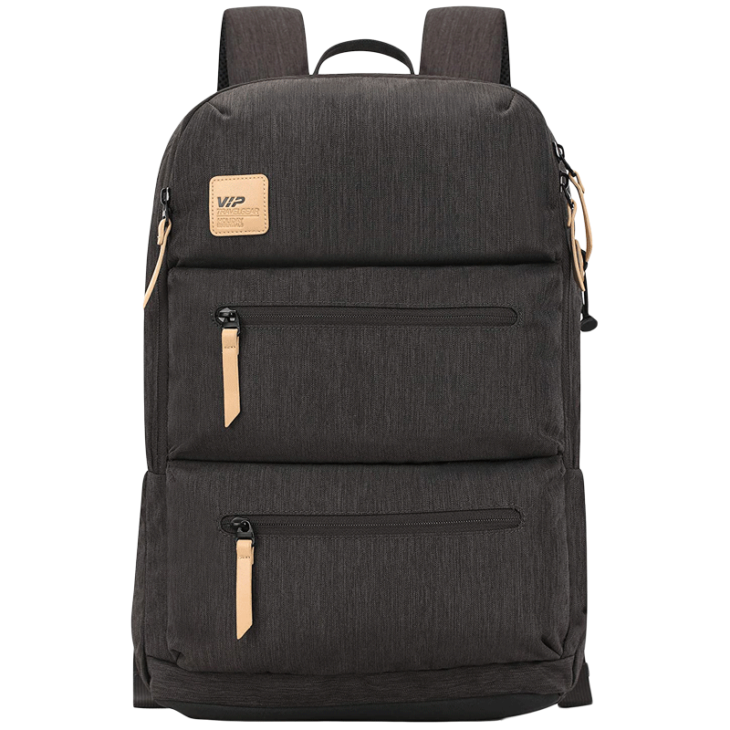 VIP Ride 01 19 Litres Polyester Casual Backpack (3 Front Pockets, BPRID01GRY, Grey)_1