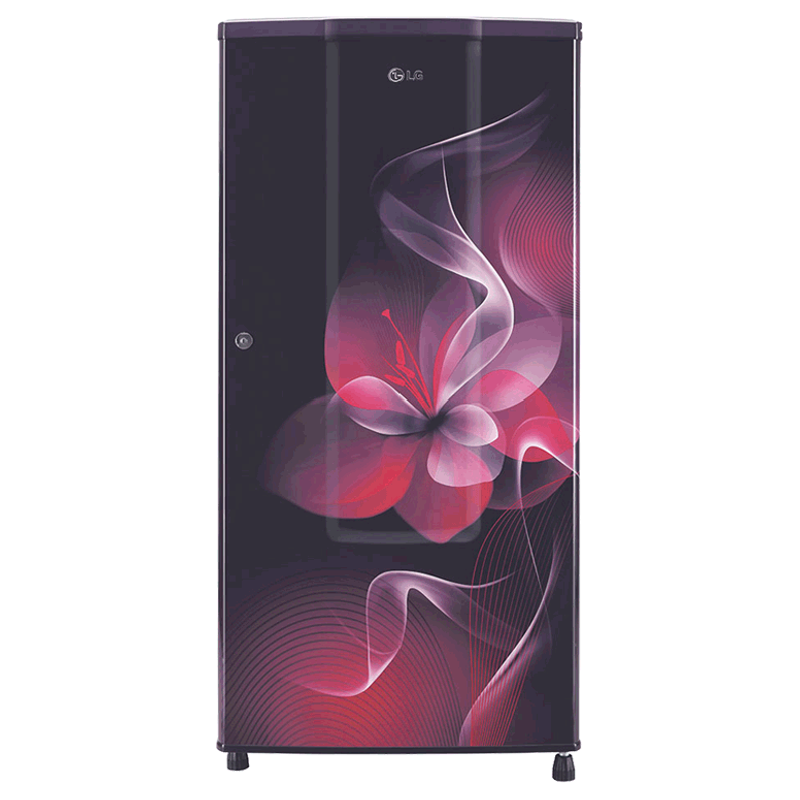 LG 185 Litres 2 Star Direct Cool Single Door Refrigerator (Anti Bacterial Gasket, GL-B181RPDC.APDZEB, Purple Dazzle)_1