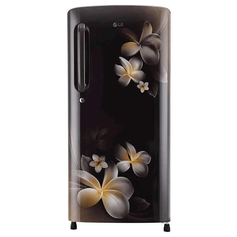 LG 190 Litres 4 Star Direct Cool Inverter Single Door Refrigerator (Smart Connect, GL-B201AHPY.AHPZEB, Hazel Plumeria)_1