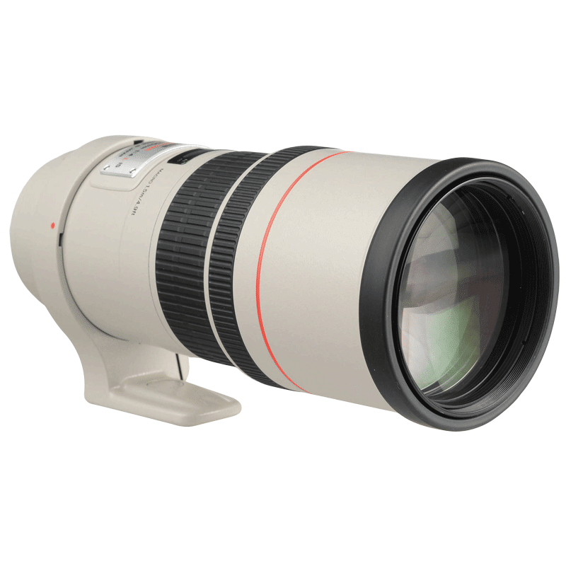 Canon Telephoto Fixed Lens (EF 300 mm f/4L IS USM, Black)_1