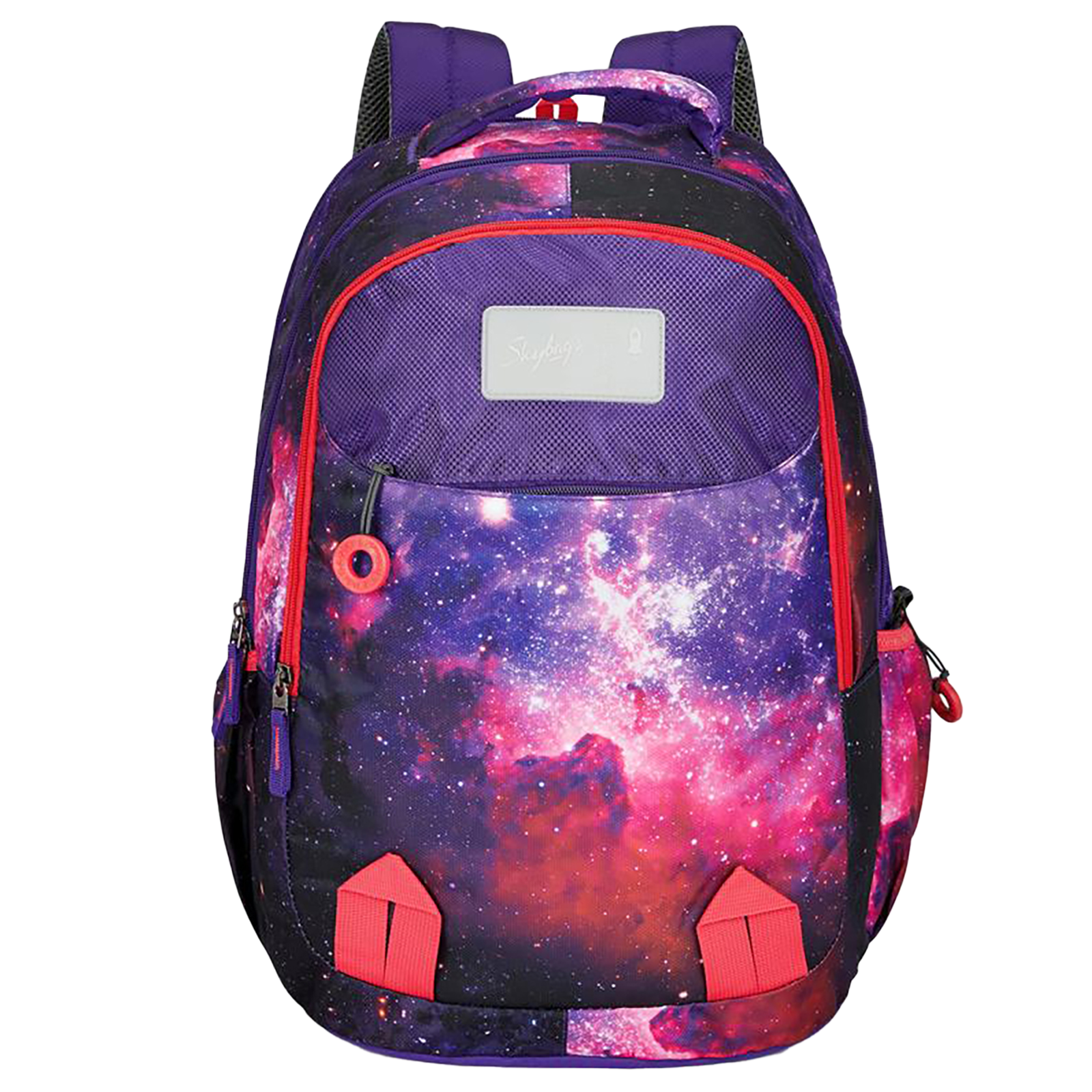 Sky Bags Astro 04 32 Litres Mini Gucci Backpack (Bottle Safety Lock, BPAST4PNK, Pink)_1